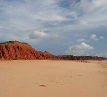 Cliff face of Quondong Beach by Saren Dobkins