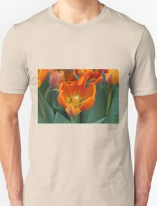 tulips in bloom Unisex T-Shirt