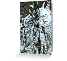 Snow Willow Greeting Card