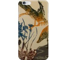 Curlews on the beach iPhone Case/Skin