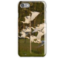 To The Roost At Sunset iPhone Case/Skin