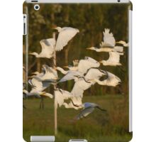 To The Roost At Sunset iPad Case/Skin