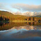 Solitude by Gregory Ballos   gregoryballosphoto.com