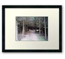 Forrest Entrance Framed Print