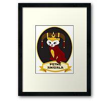 Petme Amidala Framed Print