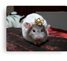 King hammy Canvas Print