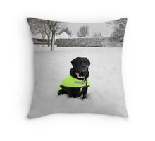 Snow Patrol Throw Pillow