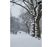 Greenwich Park 1 Photographic Print