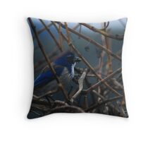 Hungry BlueJay  Throw Pillow