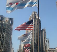 Chicago Flying High by Tracy Jule