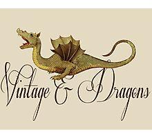 Vintage & Dragons Photographic Print