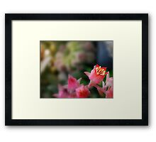 Offering Up... Framed Print