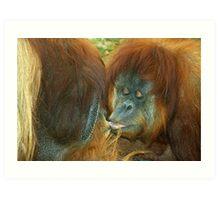 Apes in Love. Art Print