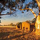 Moved On - Red Creek Road, Woodchester, South Australia by Mark Richards