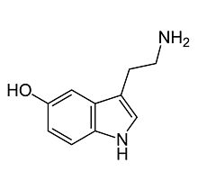 Serotonin Molecule by laurenpears