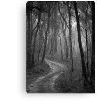 Don't Go Into The Woods Today. Canvas Print