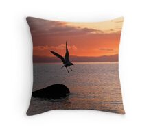 Take off eh Throw Pillow