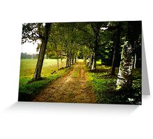 The Long Driveway Sandwich New Hampshire Greeting Card