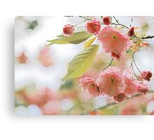 Pink and Green Pastel Flowering Tree Branch Canvas Print