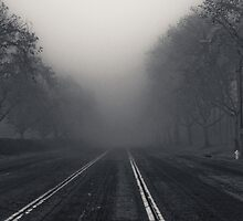 Into the Fog by Ariston Collander