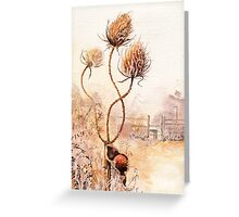 Teasels and snail Greeting Card