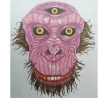 The Enlightened Ape Photographic Print