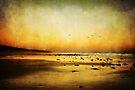 Heatwave Evening by Heather Prince ( Hartkamp )