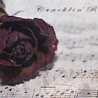 Cracklin' Rose by Maree Toogood
