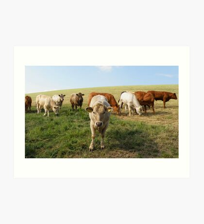 The Cow Police Art Print
