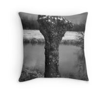 Pollard Willow Throw Pillow
