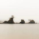 Tiny Island by Jenny Miller