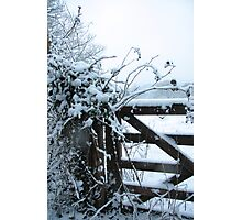 Snowy gate Photographic Print