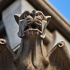 Gargoyle by andyclement