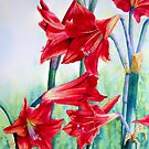 Scarlet Symphony by Fiona  Lee