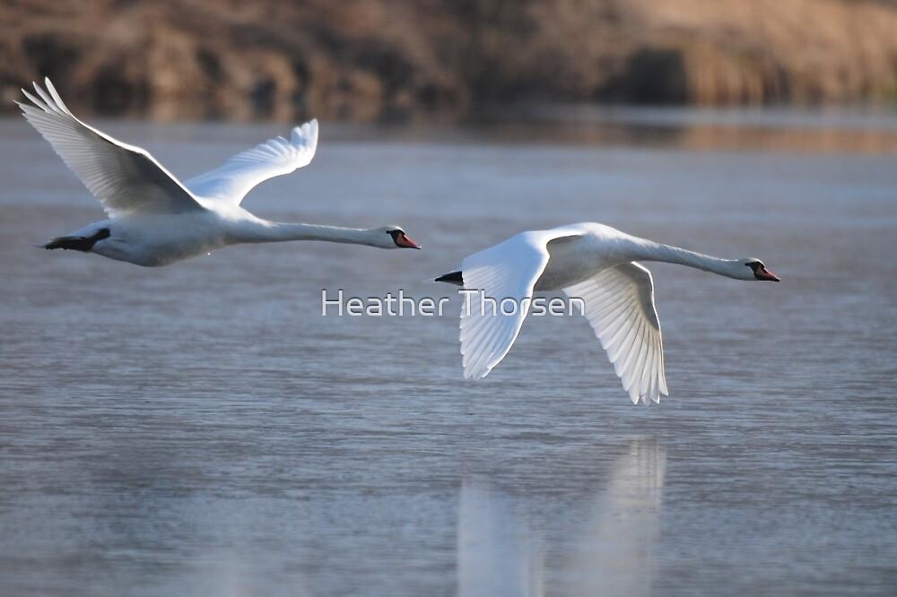 Flight by Heather Thorsen