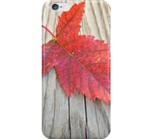 Red and Green Leaf iPhone Case/Skin