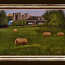 """""""A Little Bit of Country"""" ... with a canvas and framed presentation for prints and products by © Bob Hall"""