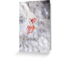 Frozen Rowan 3 Greeting Card