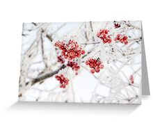 Frozen Rowan 4 Greeting Card