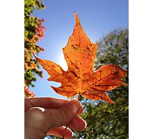 Holding Fall in my Hands Photographic Print