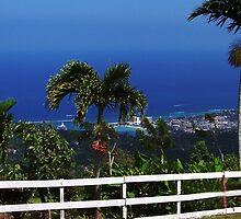 This Is Jamaica, 'Mon by Al Bourassa