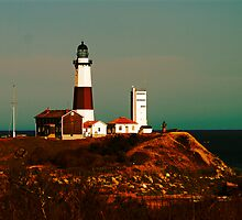 Montauk Lighthouse by Barbara Gerstner