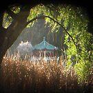 TTV Pagoda at Stow Lake by Tama Blough