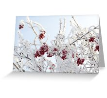 Frozen Rowan 7 Greeting Card