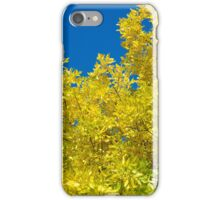 Yellow Against Blue iPhone Case/Skin