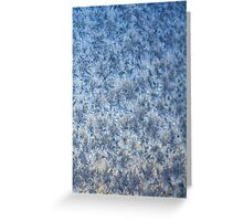 Winter frosted glass 3 Greeting Card