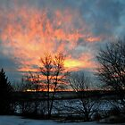 Fire In The Sky by Tracy Deptuck