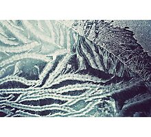 Winter frosted glass 4 Photographic Print