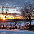 Winter's Palette by Tracy Deptuck