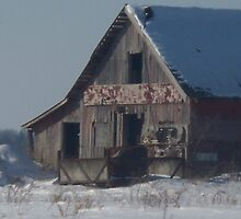 Old Barn by grannyjune